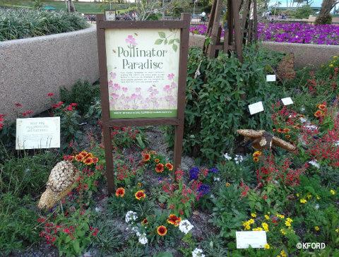 disney-epcot-flower-garden-festival-pollinators-garden.jpg