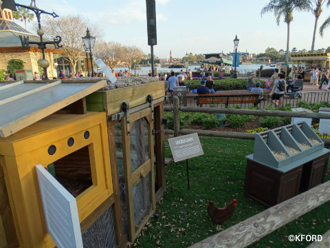 disney-epcot-flower-garden-festival-urban-farms-eats-chicken-display.jpg