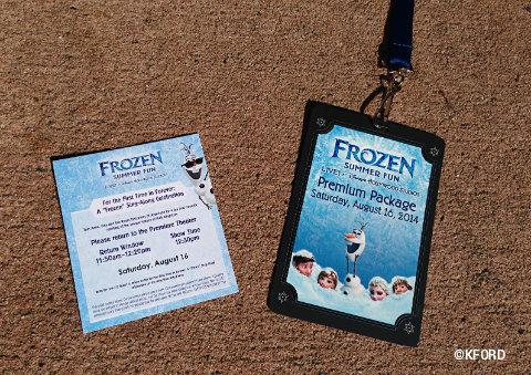 disney-frozen-summer-fun-lanyard-ticket.jpg