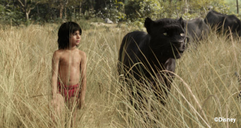 disney-jungle-book-mowgli-panther.jpg