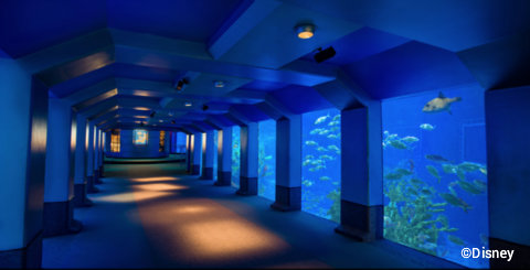 disney-the-seas-with-nemo-and-friends-viewing-aquariums.jpg