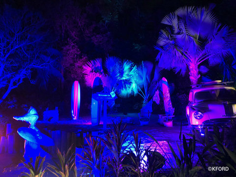 disney-typhoon-lagoon-glow-nights-photo-op.jpg
