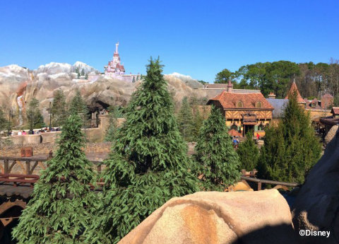 disney-view-from-mine-train1.jpg