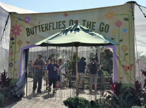 disney-world-epcot-butterfly-tent-entrance.jpg