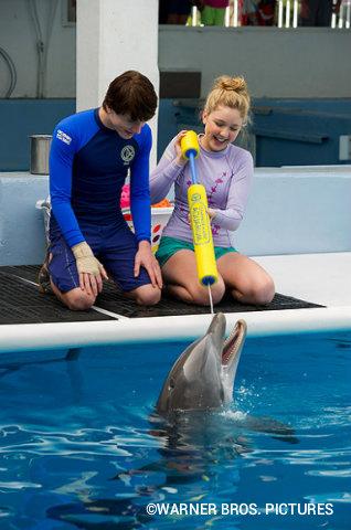 dolphin-tale-2-sawyer-hazel-hope.jpg