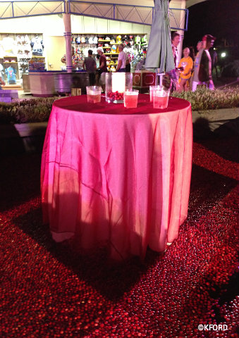 epcot-cranberry-bog-reception.jpg