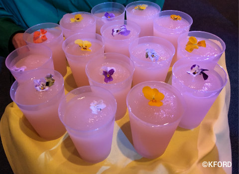 epcot-flower-garden-2016-tray-of-desert-violet-lemonade.jpg