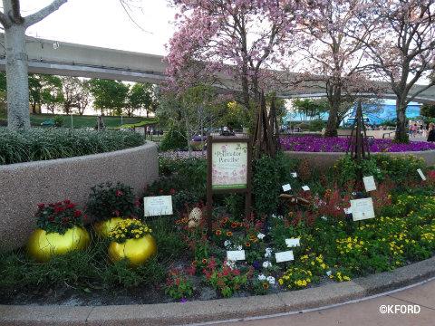epcot-flower-garden-festival-2016-pollinator-paradise.jpg