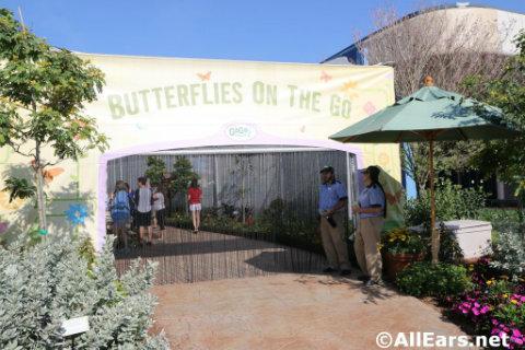 epcot-flower-garden-festival-butterfly-tent.jpg