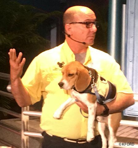 epcot-flower-garden-festival-captain-ron-beagle-handler.jpg