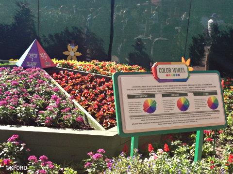 epcot-flower-garden-festival-color-wheel-bed.jpg