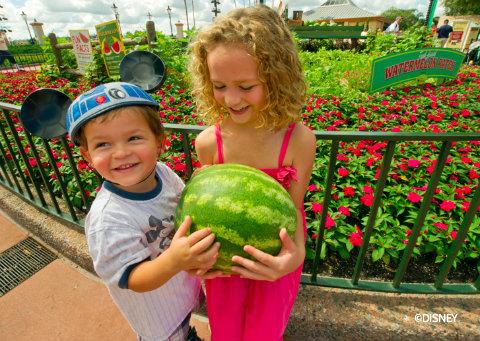 food-wine-festival-watermelon-exhibit.jpg