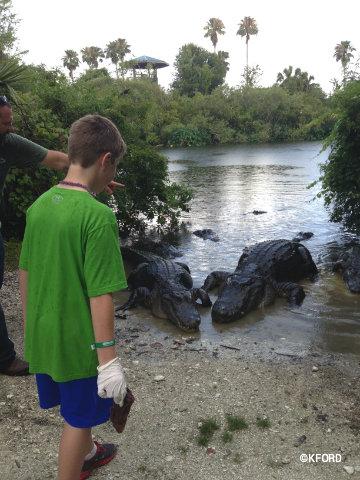 gatorland-carter-feeding.jpg