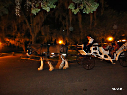 haunted-carriage-ride-spooky.jpg