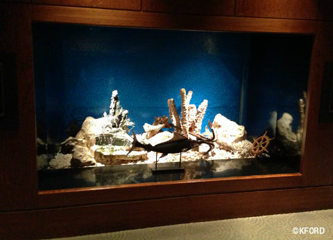 living-seas-salon-coral-display.jpg