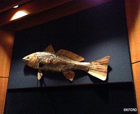 living-seas-salon-fish-decor.jpg