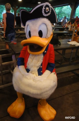 mickeys-backyard-bbq-donald-duck.jpg