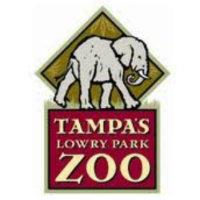 new-years-eve-lowry-zoo.jpg