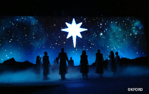 seaworld-christmas-o-wondrous-night-star.jpg