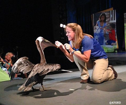 seaworld-generation-nature-live-1.jpg