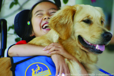 seaworld-graduation-canine-companions-for-independence.jpg