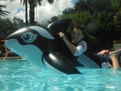 seaworld-inflatable-whale.jpg