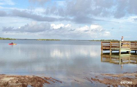 seaworld-manatee-release-eddy-creek.jpg