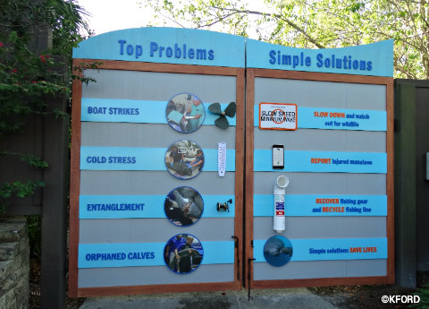 seaworld-orlando-dangers-to-manatees-display.jpg