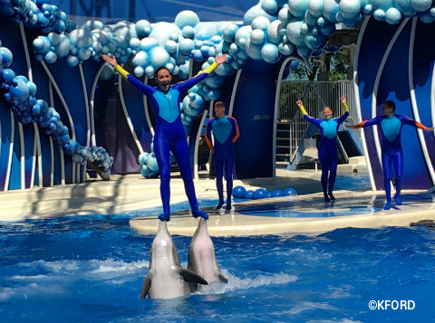 seaworld-orlando-dolphin-days-balancing-on-2-dolphins-noses.jpg