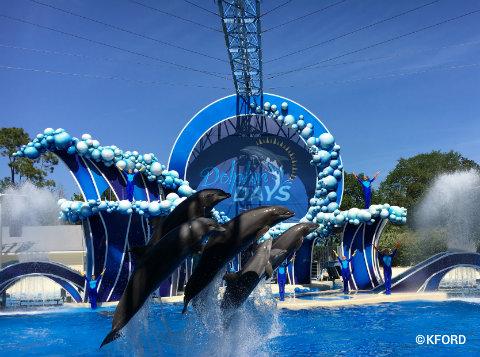 seaworld-orlando-dolphin-days-finale.jpg