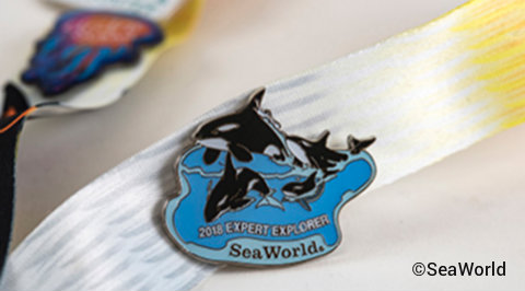 seaworld-orlando-inside-look-weekends-explorer-pin.jpg