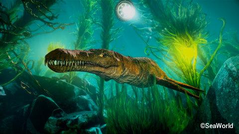 seaworld-orlando-kraken-kelp-forest.jpg