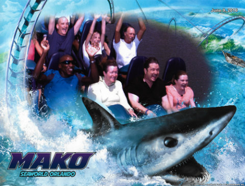 seaworld-orlando-official-mako-ride-photo-lauren.jpg