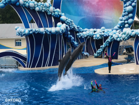seaworld-orlando-touch-the-sky-pair-of-dolphins.jpg