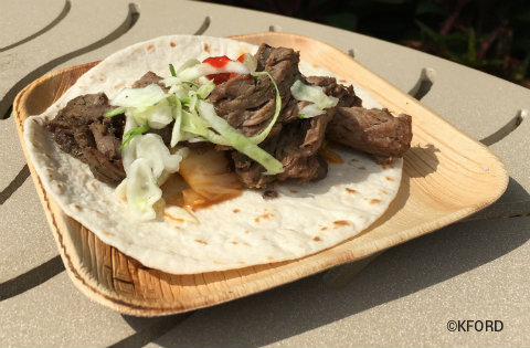 seaworld-seven-seas-food-festival-korean-beef-taco.jpg