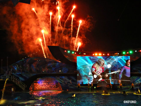 seaworld-shamu-rocks-fireworks.jpg