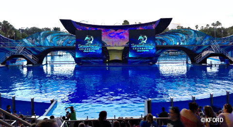 seaworld-shamus-celebration-1.jpg