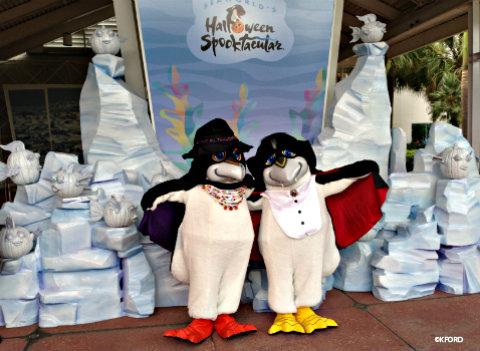 seaworld-spooktacular-pete-penny-penguin.jpg