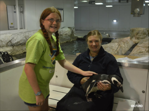 seaworld-summer-camp-2015-petting-penguin.jpg