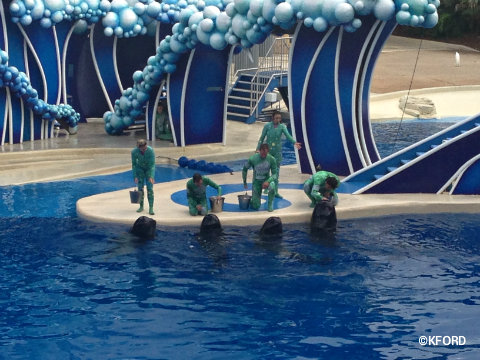 seaworld-wild-days-four-pilot-whales.jpg
