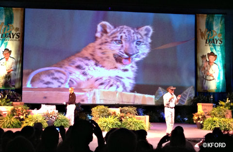 seaworld-wild-days-jack-hanna-on-stage.jpg