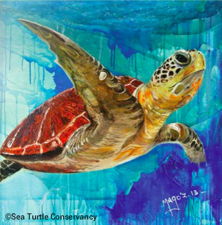 tour-de-turtles-2014-art.jpg