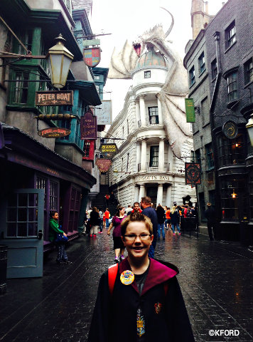 universal-orlando-harry-potter-diagon-alley-carter.jpg
