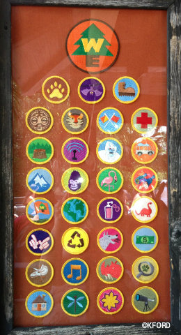 wilderness-explorers-badges.jpg