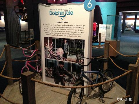 winters-dolphin-tale-adventure-bikes.jpg
