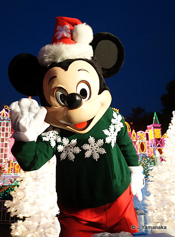 Holidaytime at Disneyland