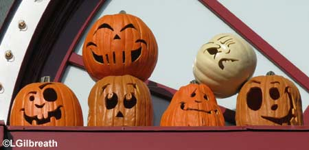 dht08_pumpkins.jpg