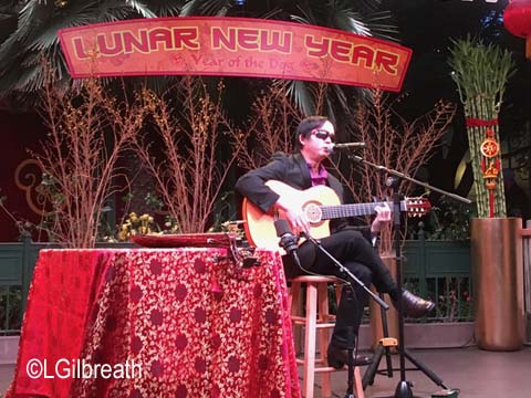 Lunar New Year 2018 Dat Nguyen