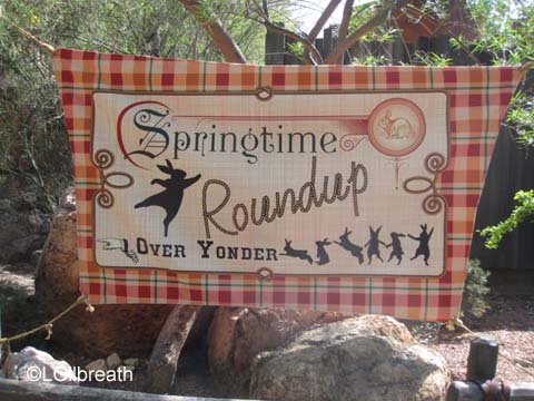 Springtime Fun at Disneyland