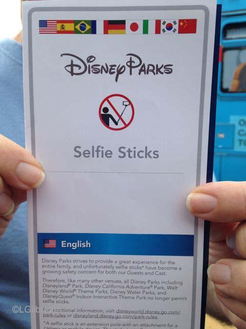 Disneyland 070315